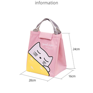 Folding Tote (Insulated Bag)