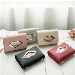 Simple Lady bag